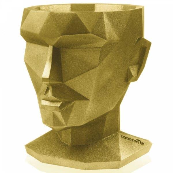 donice-głowa 6